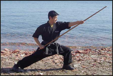 image clint cora karate kung fu bo staff martial arts videos